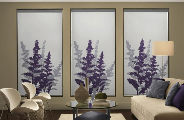 Custom Graphic Roller Or Pleated Shades Westfield Nj