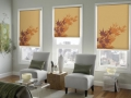 Custom Graphic Roller Shades