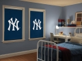 Custom Sports Graphic Roller Shades